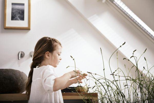 Jak wykończyć zdrowe i energooszczędne mieszkanie?